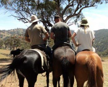 Australie Ultimate Oz Ranch Leconfield