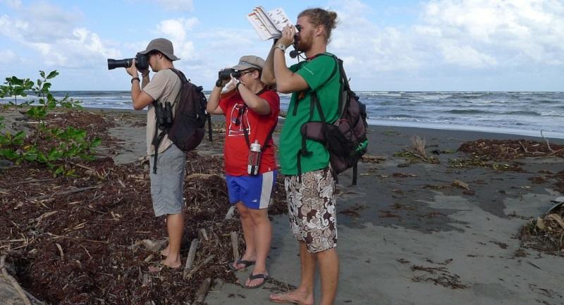 Costa Rica Wildlife Expedition onderzoek op het strand