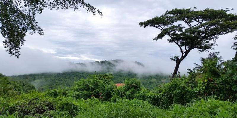 Kickstart Costa Rica excurise Monte Verde National Park