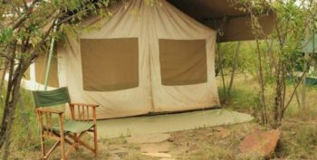 Masai Mara Big Cat Conservation 14