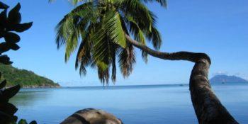 Seychellen Marine and Terrestrial Conservation 15