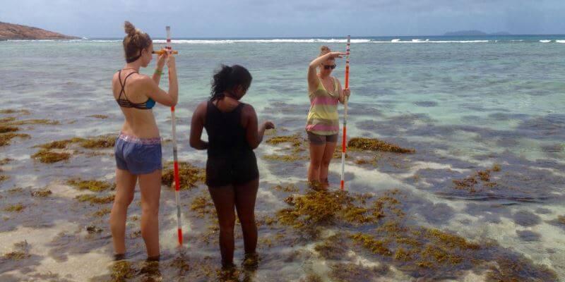 Seychellen Marine and Terrestrial Conservation 5