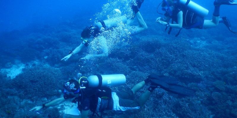 Seychellen Marine and Terrestrial Conservation 6