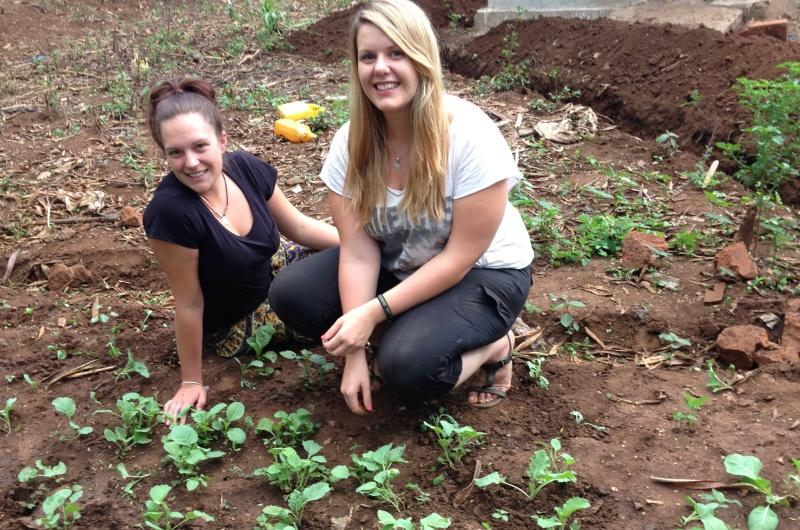Tanzania vrijwilligerswerk Kilimanjaro groentetuin