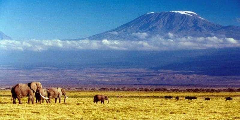 Vrijwilligerswerk Tanzania Massai project Kilimanjaro