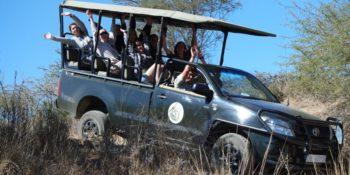 Zud-Afrika Cheetah and Wildlife Conservation