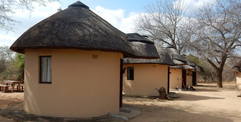 Zuid-Afrika Cheetah and Wildlife Conservation accommodatie