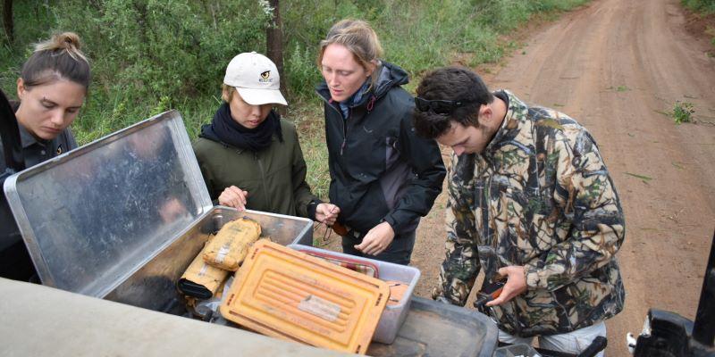 Zuid-Afrika Kwazulu Big 5 reservaten Jorn