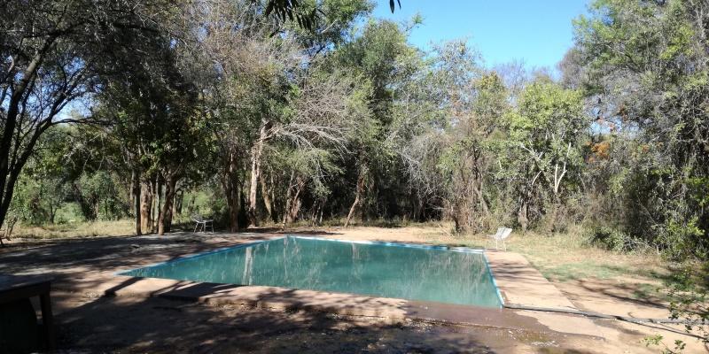 Zuid-Afrika-Monkey-Rehab-Irma