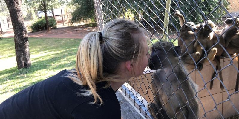 Zuid-Afrika Monkey Rehabilitation project