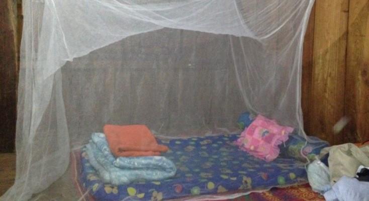 Olifantenproject Thailand accommodatie bed met klamboe
