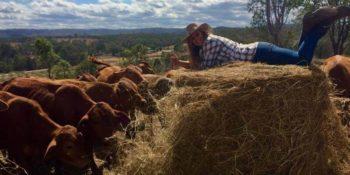 Lecondfiels Farm Steef en Lisan 1