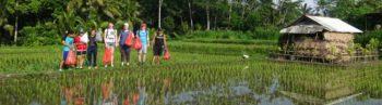 vrijwilligerswerk Bali header