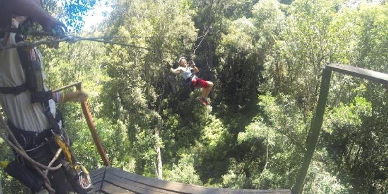 Garden Route Tour Canopy zip line