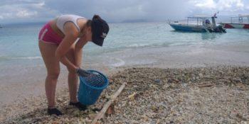 Vrijwilligerswerk Bali Schildpaddenproject 3