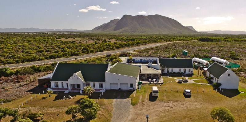 Zuid-Afrika-MArine-Conservation-Gansbaai-Volunteer-Accommodation