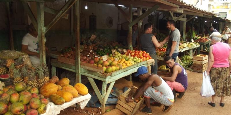 Cuba vrijwilligerswerk Havana MARKT