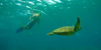 Great Barrier Reef - East Coast