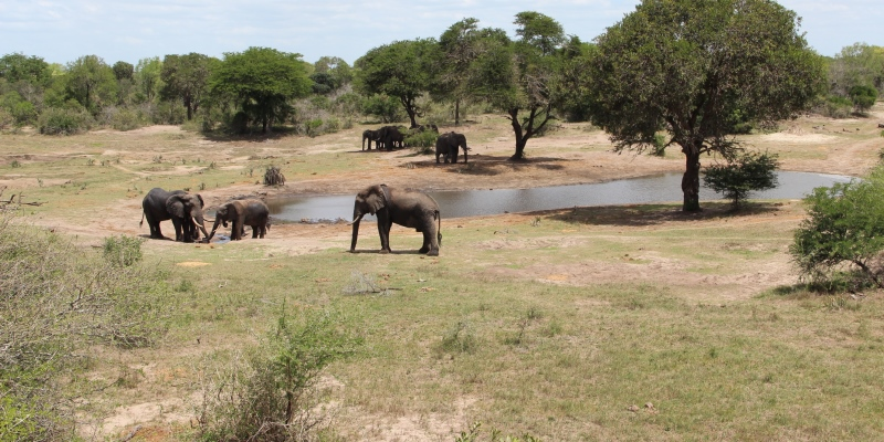Zuid-Afrika Kwazulu Big 5 reservaten reisverhaal Martin