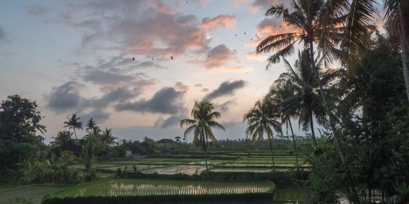 Indonesie Bali Luuk