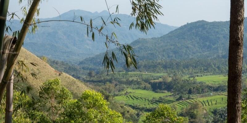 Indonesie Flores foto van Luuk rijstvelden2