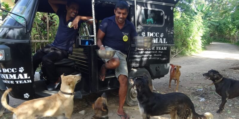 Sri Lanka Dog Care Project 2
