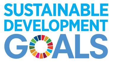 Logo Duurzame ontwikkelingsdoeleinden