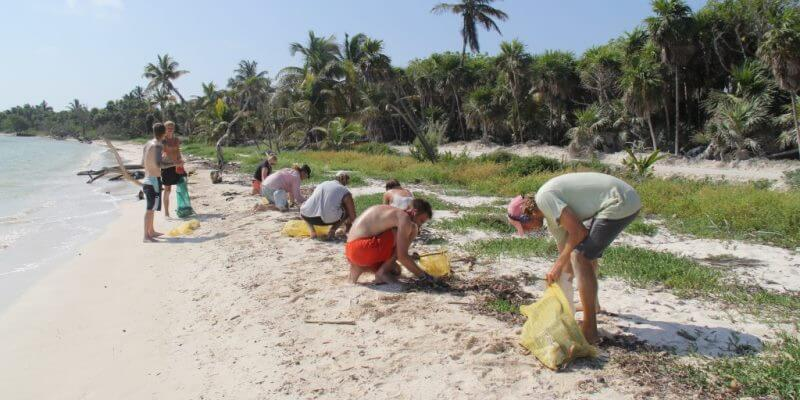 Mexico Marine Conservation Expedition beach cleanup