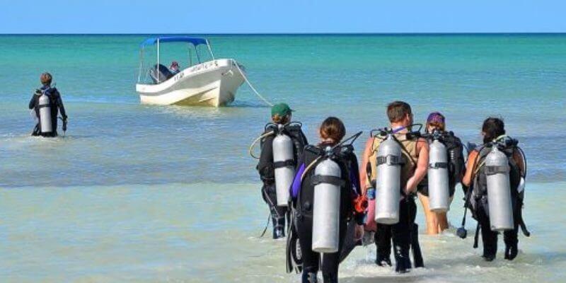 Mexico Marine Conservation Expedition duikers klaar voor duik