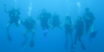 Mexico Marine Conservation Expedition onderwater