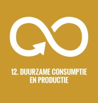 De duurzame ontwikkelingsdoelen van de Verenigde Naties doel 12