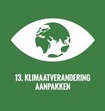 SDG-goals-nederlands-13 klein