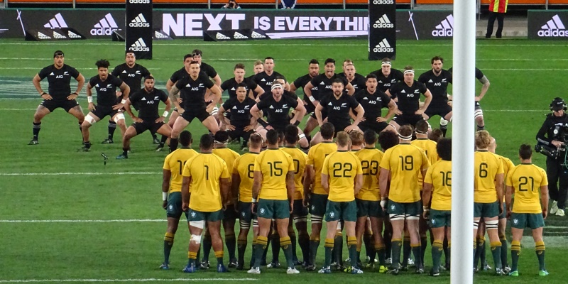 Au Pair in Nieuw-Zeeland All Blacks