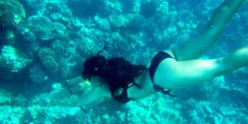 Groepsreis Australie snorkelen Great Barrier Reef