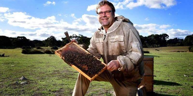 Kangaroo Island Wildlife Sanctuary bijen