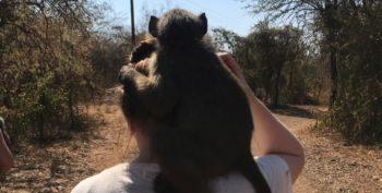 Elien bij Monkey Rehab 8