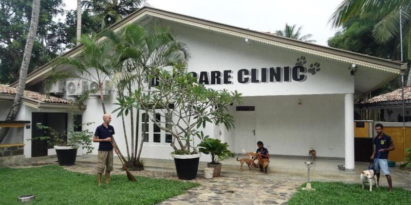 Sri Lanka Dog Care Project 3