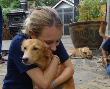 Sri Lanka Dog Care Project tegel