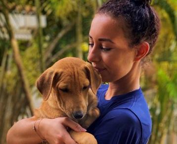 Dog Care Sri Lanka tegel