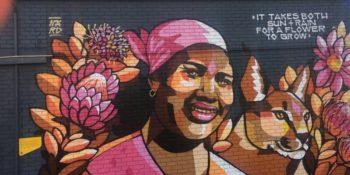3 weken Kaapstad muurschildering