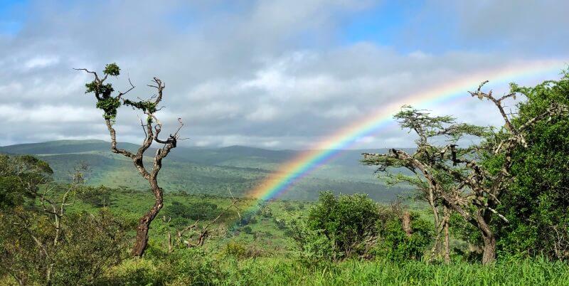 Kwazulu Big 5 project regenboog